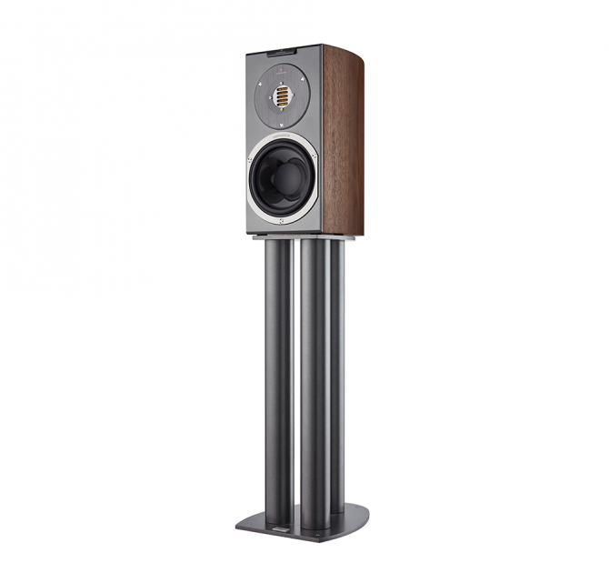 Audiovector R1 Avantgarde in italian walnut