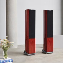 Audiovector R6 Signature pair with grille